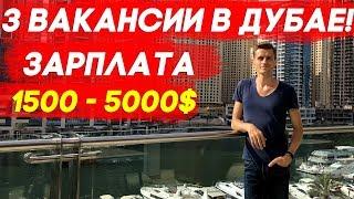 ПРЕДЛАГАЕМ РАБОТУ В ДУБАЕ! 3 ВАКАНСИИ! ЗАРПЛАТА ОТ 1500 - 5000$ Video