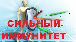 Главный секрет сильного иммунитета. Профилактика и быстрое лечение простуды и гриппа