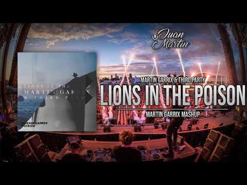 Lions In The Wild vs. Poison (Martin Garrix Mashup)
