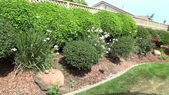 Water saving landscaping tips