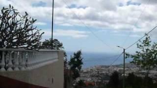 Madeira 2009 - Monte Toboggan Ride
