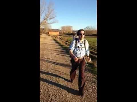 Camino de Santiago: Pilgrim superstar
