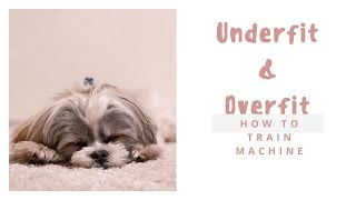 Overfitting and Underfitting With Machine Learning Algorithms|avoid overfitting