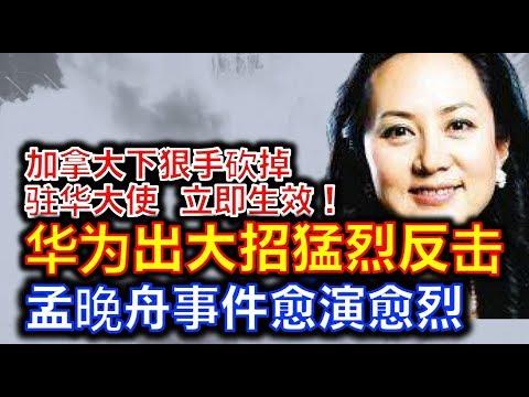 中国人民的朋友!加拿大驻华大使麦家廉(被)辞职 华为开始出大招猛烈反击