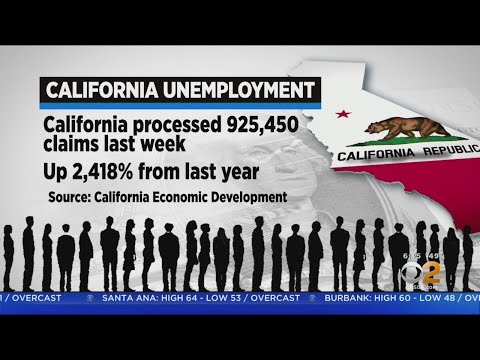 California Jobless Claims Up 2,400 Percent From Same Week La