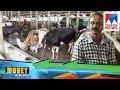 സെബിയുടെ 'അന്നാസ് ഫാം' | Moneykilukkam  | Annas Farm | Raw Squeezed |