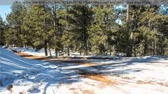 Priced at $17,825 - 85 Wilson Drive, Florissant, CO 80816