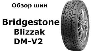 ❄ Bridgestone Blizzak DM V2 - обзор зимних шин. Замер ДЮРОМЕТРОМ ????