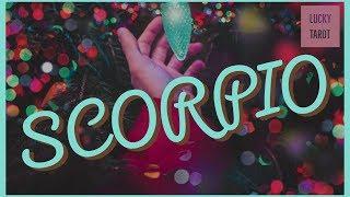 Scorpio Dec 15-30 Torn between two loves!
