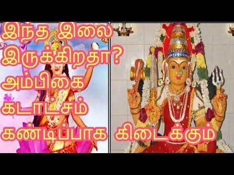 சரஸ்வதி-பூஜை-எளிய-முறையில்-கொண்டாடுவது-எப்படி?