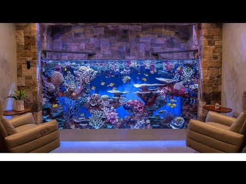 Massive Custom Home Aquarium - 3000g Saltwater - Large Fish Tank Build