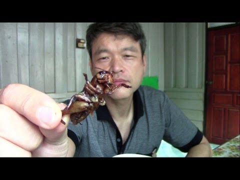 How to cook the cricket and eating it in Savannakhet, Laos