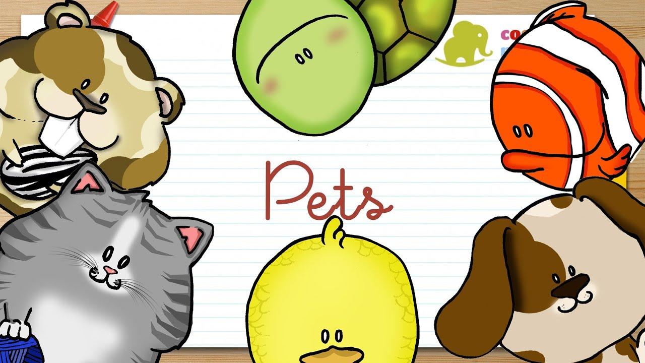 Mascotas en ingl s para ni os youtube - Imagenes animales infantiles ...