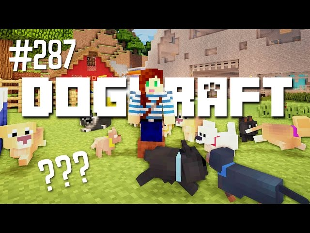Little Dogs, Big Decision | Dogcraft (Ep.287)