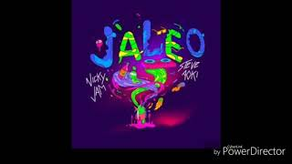 Jaleo - Nicki Jam X Steve Aoki - Audio - Letra Video