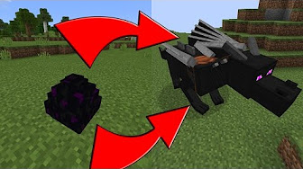 how to make a guard dog in minecraft pe