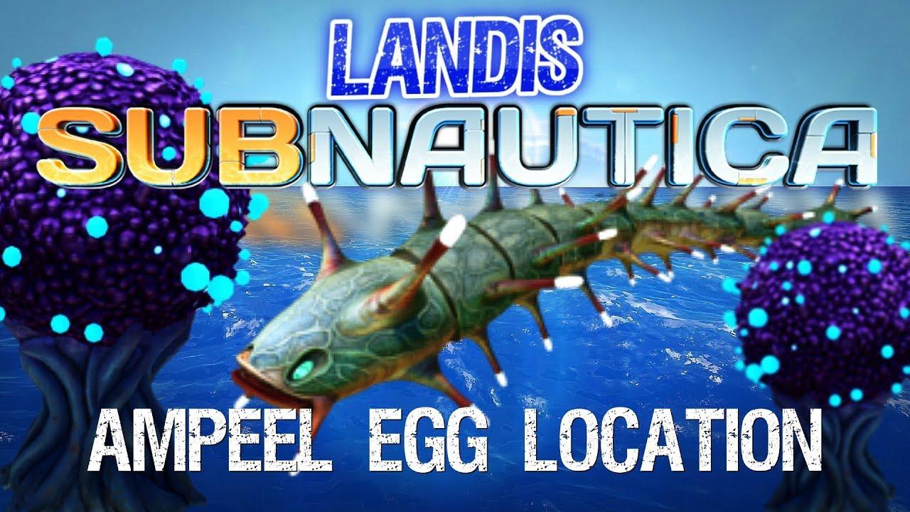 Amp Eel Eggs - Subnautica guides - ZP CF