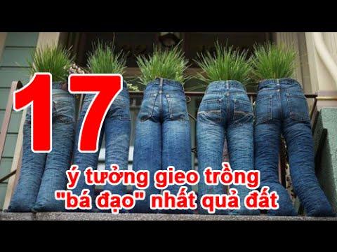"""17 ý tưởng gieo trồng """"bá đạo"""" nhất quả đất"""