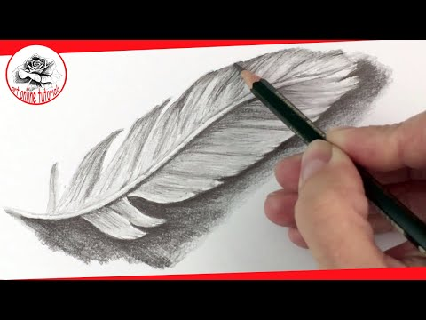 How to Draw a Feather with Pencil step by step | Pencil Drawing Techniques  (Subtitled on Screen)