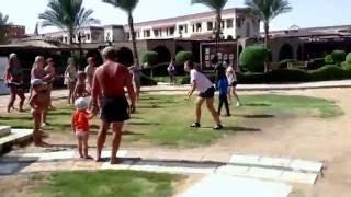 On the beach , Sunrise Garden Beach Resort & Spa , Hurghada Egypt
