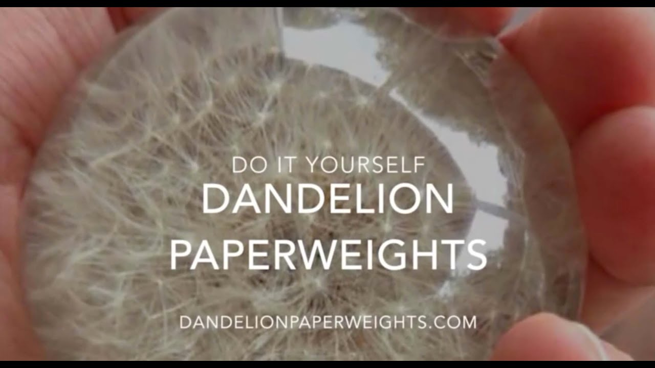How To Make A Dandelion Paperweight Youtube