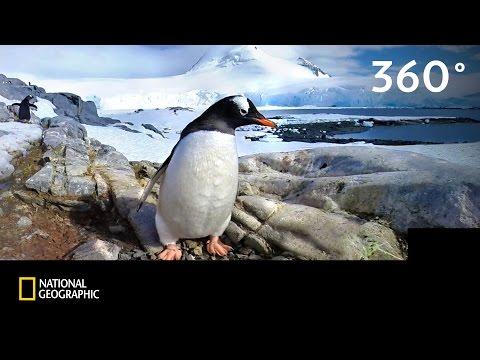 360°   Antarktika 2