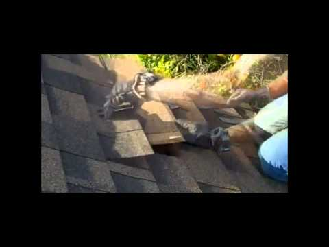 roof-repair---how-to-replace-roofing-shingles