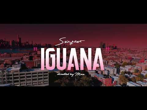 Video: SHIRAZEE - IGUANA @naijareview