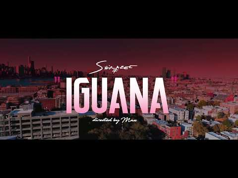 Shirazee - Iguana (OFFICIAL VIDEO)