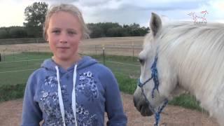 Kinder-Sommer-Reitcamp bei Fluidum : Der Kurzfilm