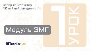 Урок 1. Модуль ЭМГ BiTronics Lab