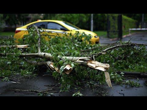Ураган в Москве. Последствия урагана. Подробности.