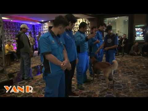 Anjing Pemburu K9 Lacak Narkotika di Sense Karaoke Mangga Dua