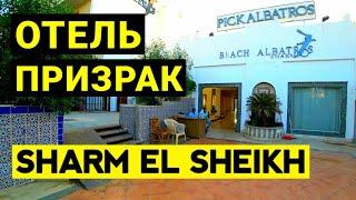 Отель призрак Beach Albatros Sharm 4 Дорога из пляжа в отель Albatros Aqua Blu 4 Отдых в Египте