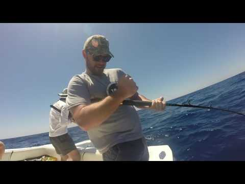 Offshore Fishing- Cape Canaveral