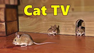 Cat TV ~ Mice in The Jerry Mouse Hole  8 HOURS