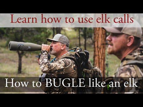Part 3 How to Bugle Like an Elk!
