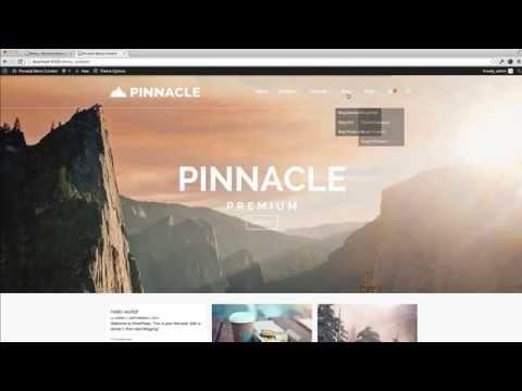 Install Demo Content – Pinnacle Premium WordPress Theme