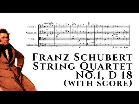 Franz Schubert - String Quartet No.1, D.18 (with score)