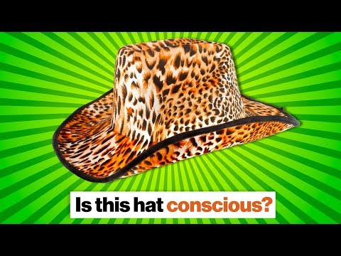 Is this hat conscious? | Ben Goertzel on consciousness, panpsychism, and AGI | Big Think