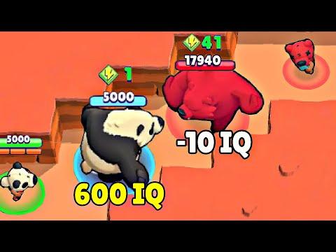 600 IQ Panda