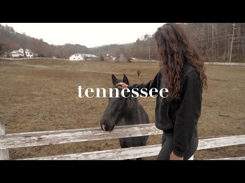 TRAVEL VLOG: Tennessee 2019