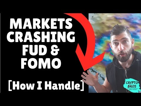 Crashing Markets, Fud & Fomo [How I Am Handling]