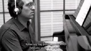Máté Péter – Hull az elsárgult levél – Esperanto – subteksto