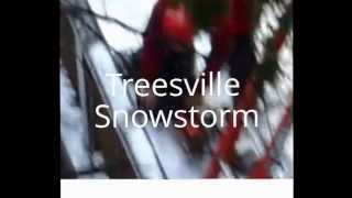TreesVille Snowstorm, Parts 1-6 Complete  5:39