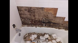 Shower Water Damage Mold Disaster