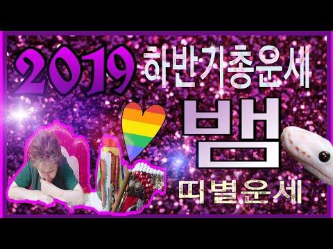 2019운세/뱀띠/띠별운세/삼재비방/뱀띠하반기운세 미리듣고가자/장군보살