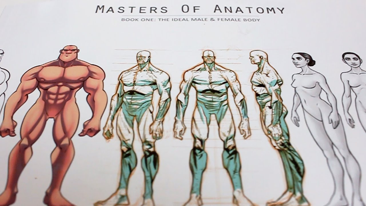 Book Review: Masters of Anatomy - YouTube