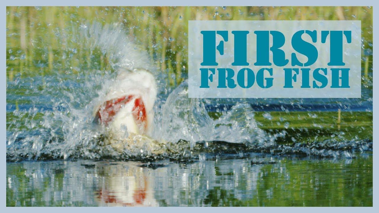 My First Frog Fish!! Bassmaster Elite Series Challenge