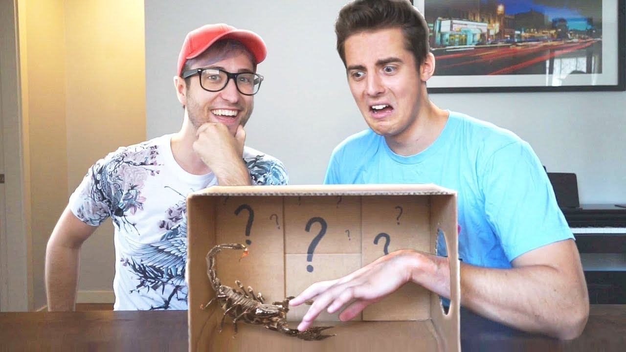 What S In The Box Challenge Youtube